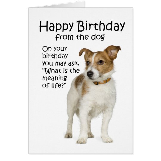 Funny jack russell terrier birthday card zazzle funny jack russell terrier birthday card bookmarktalkfo Image collections