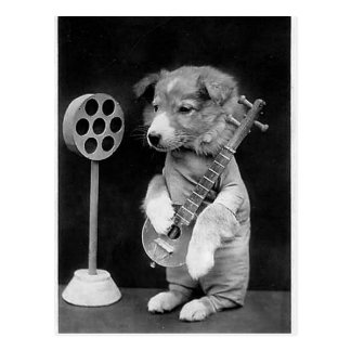Funny JACK RUSSELL Terrier dog playing banjo Postcard