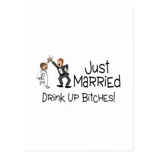 Funny Just Married Wedding Toast Postcard