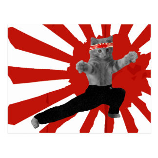 Funny Karate Kitten gifts Post Cards