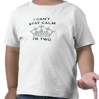 Funny Kid's 2nd Birthday I Can't Stay Calm I'm Two Tees