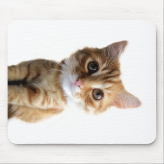 funny kitten design mouse pads
