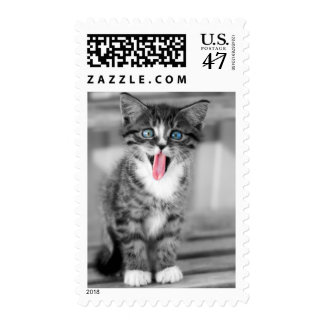 Funny Kitten With Tongue Hanging Out Stamp