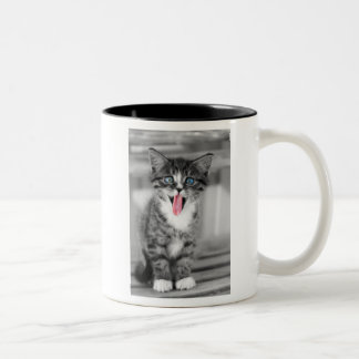 Funny Kitten With Tongue Hanging Out Two-Tone Coffee Mug