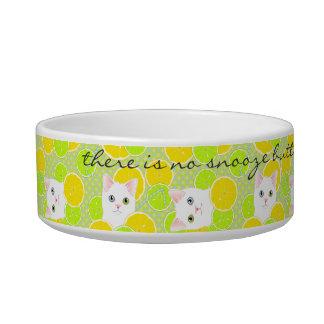 Funny Kitty Cat pet bowl Sunny, Cheerful, Cute!
