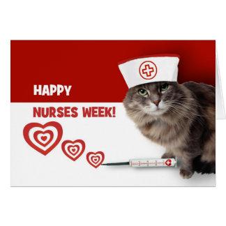 Funny Kitty Custom Nurses Week Greeting Cards