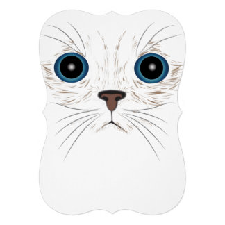 Funny kitty face card