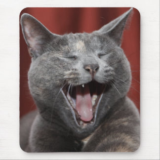 Funny kitty - Ready to eat the mouse! Mouse Pad