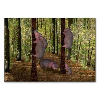 Funny Koala-Wannabe Hippos Card