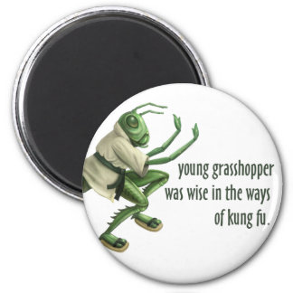 Funny Kung Fu Grasshopper 2 Inch Round Magnet