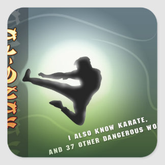 Funny Kung-Fu Square Sticker