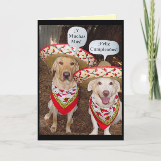 Funny Lab Birthday Card In Spanish Zazzle