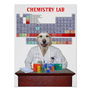Funny Lab Chemistry Poster For Teachers at Zazzle