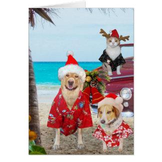 Funny Lab/Dog and Cat Hawaiian/Surfer Christmas Card