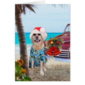 Funny Lab/Dog Hawaiian/Surfer Christmas Greeting Card