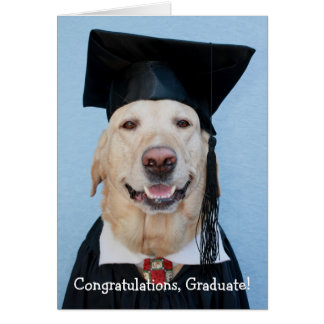 Funny Lab Graduation Card