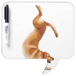 funny labrador - dog yoga - golden retriever Dry-Erase board