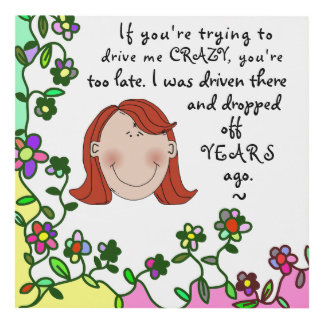 Funny Lady Mom Driven Crazy Wall Plaque Panel Wall Art