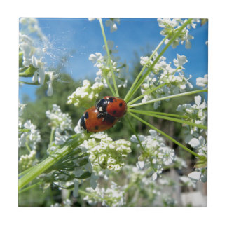 funny ladybug luck at love playing in spring ceramic tile