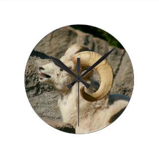 Funny Laughing Bighorn Sheep or Ram Round Clock
