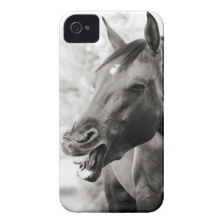 Funny Laughing Horse iPhone 4 Covers