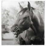 Funny Laughing Horse Cloth Napkin