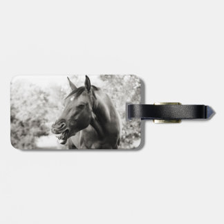 Funny Laughing Horse Luggage Tag