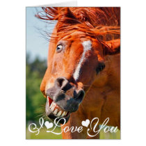 Funny laughing Horse Photograph I Love You Card