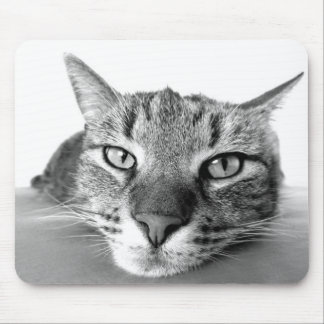 Funny Lazy Cat Mouse Pad