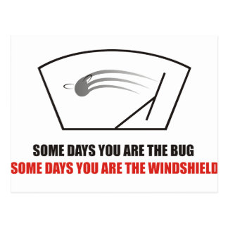 Funny - Life as Bugs on a windshield. Postcard