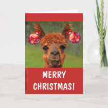 Funny Llama And Christmas Ornaments Holiday Card