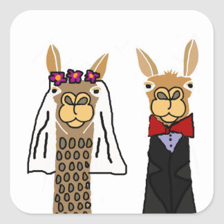 Funny Llama Bride and Groom Wedding Art Square Sticker
