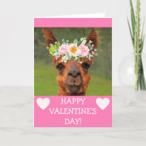 Funny Llama Flower Tiara Valentine's Day Holiday Card