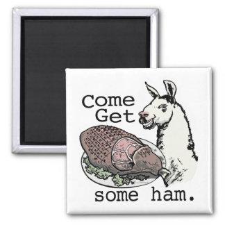 Funny Llama getting ham by Mudge Studios 2 Inch Square Magnet