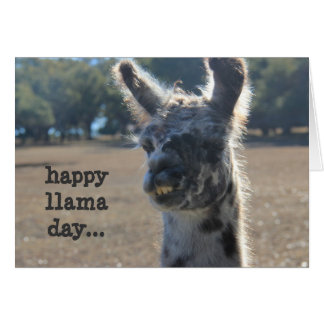 Funny Llama Mother's Day Card