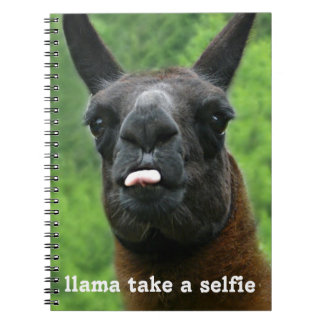 Funny Llama take a selfie cute quote and photo Spiral Note Book
