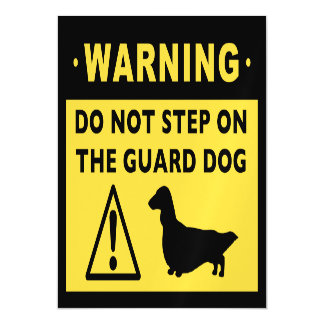 Funny Long Haired Dachshund Guard Dog Warning Magnetic Invitations