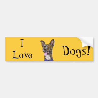Funny Looking Colorful Sketched Dog with Big Ears Bumper Sticker
