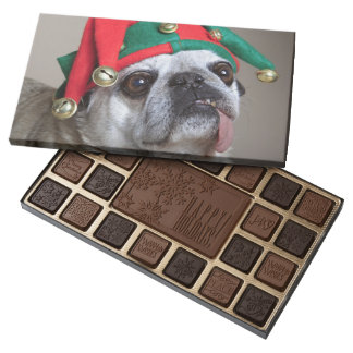 Funny looking pug with tongue hanging out 45 piece box of chocolates
