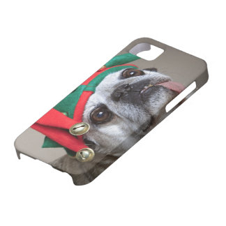 Funny looking pug with tongue hanging out iPhone SE/5/5s case