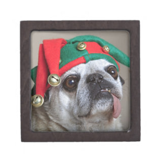 Funny looking pug with tongue hanging out jewelry box