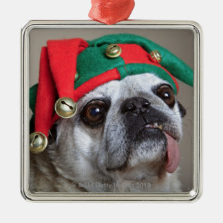 Funny looking pug with tongue hanging out metal ornament