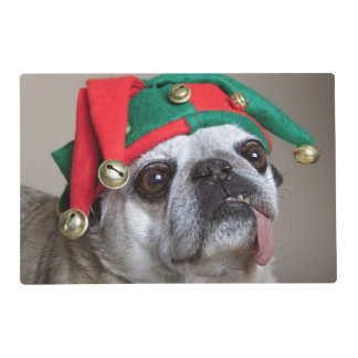Funny looking pug with tongue hanging out placemat