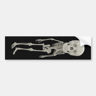 Funny looking skeleton bumper sticker
