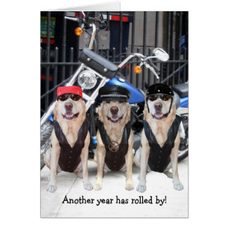 Funny Male Biker Lab Greeting Card