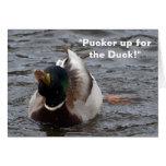 Funny Mallard Duck Birthday Card