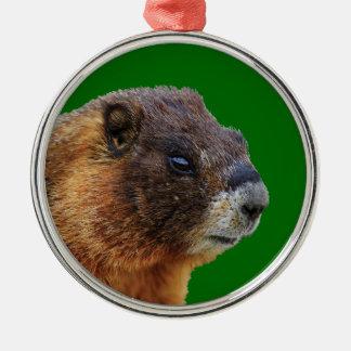 funny marmot metal ornament