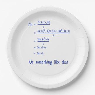 Funny Math stuff 9 Inch Paper Plate