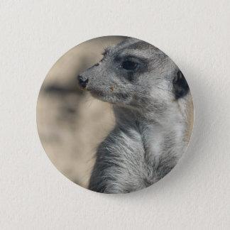 Funny Meerkat Pinback Button