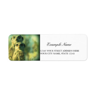 Funny meerkats return address label
